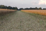 Ümber Viljandi järve jooksu rada on osalejatele valmis