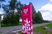 Jooksule bussiga Tallinnast, Raplast, Pärnust ja Viljandist