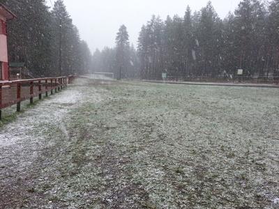 Esimene lumi Alutagusel Foto:Timo Juursalu