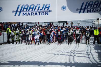 41. Haanja maraton (Foto: Tarmo Haud)
