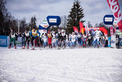 16. Tallinna Suusamaraton (Foto: Tarmo Haud)