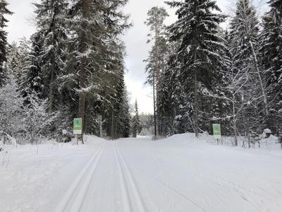 Fotol Tartu Maratoni rada 16. jaanuaril. Autor: Tanel Rungi