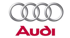 9. Audi Saaremaa GP